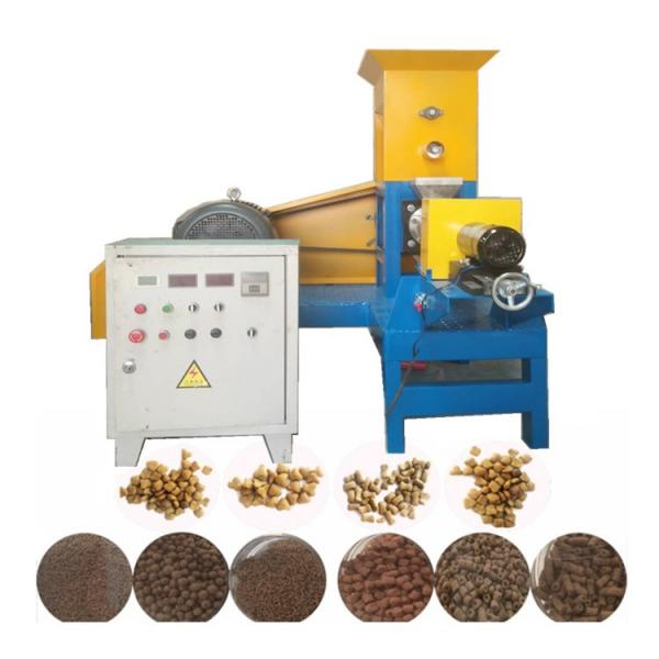 Commercial Food Processor Meat Ball Production Fish Meat Ball Maker Making Machine (TS-SC300B)